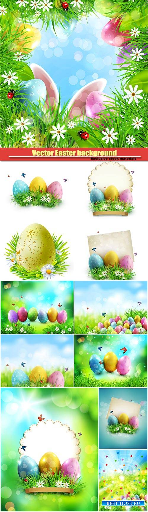 Vector Easter background, easter eggs in green grass with white flowers, bu ...
