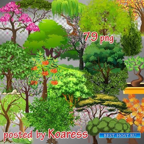 Png клипарт для фотошопа - Летние, осенние, весенние цветущие нарисованные  ...
