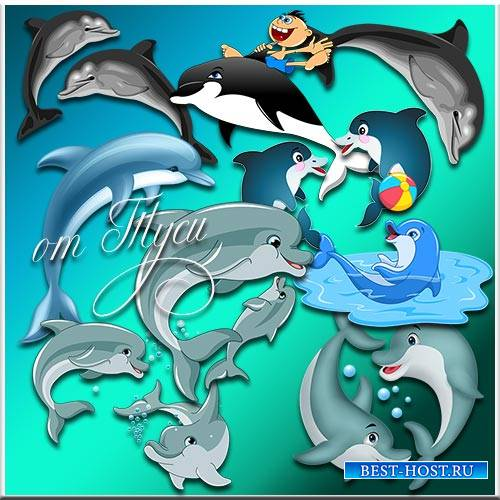 Дельфины - Клипарт