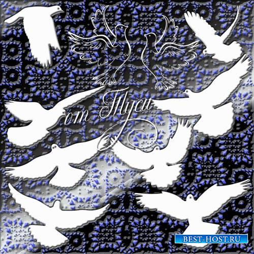 Клипарт - Белый голубь - голубь Мира и Любви