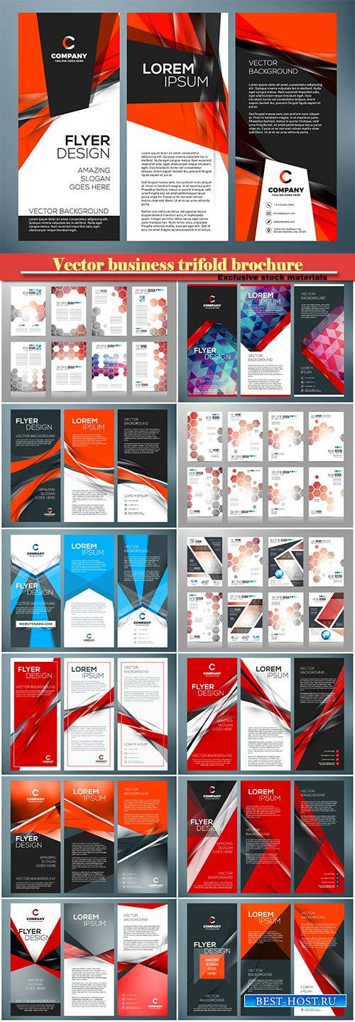 Vector business trifold brochure or banner template