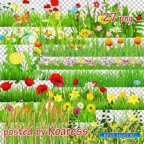 Png клипарт для дизайна - Цветочный луг, поляны (часть 1)