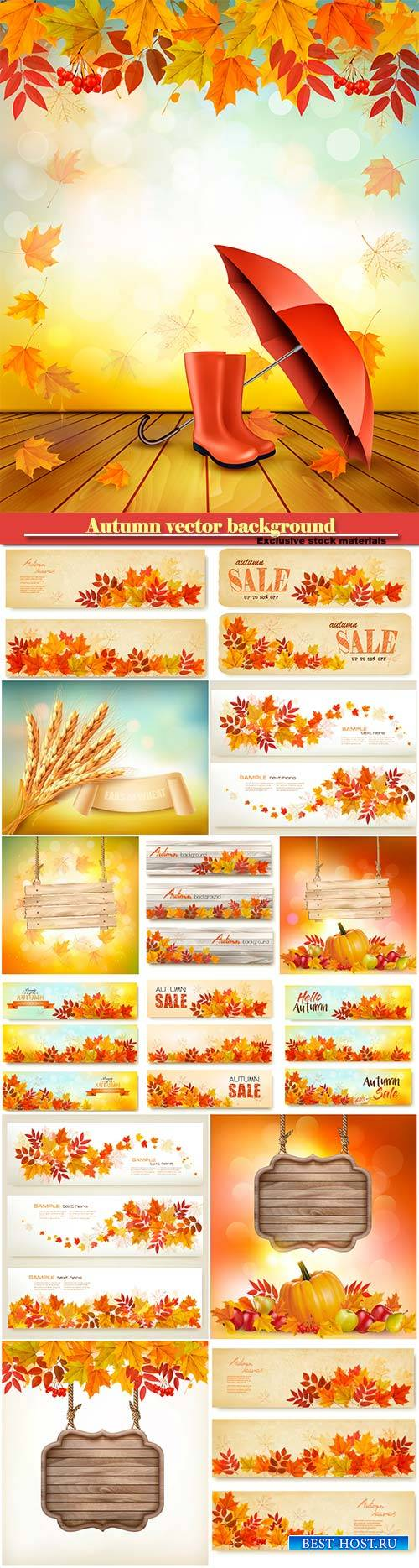 Autumn vector background with fruit and leaves, autumn sale banners
