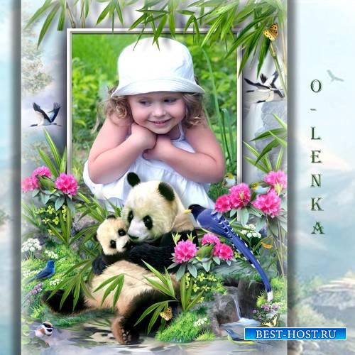 Детская фоторамка - Бамбуковый мишка