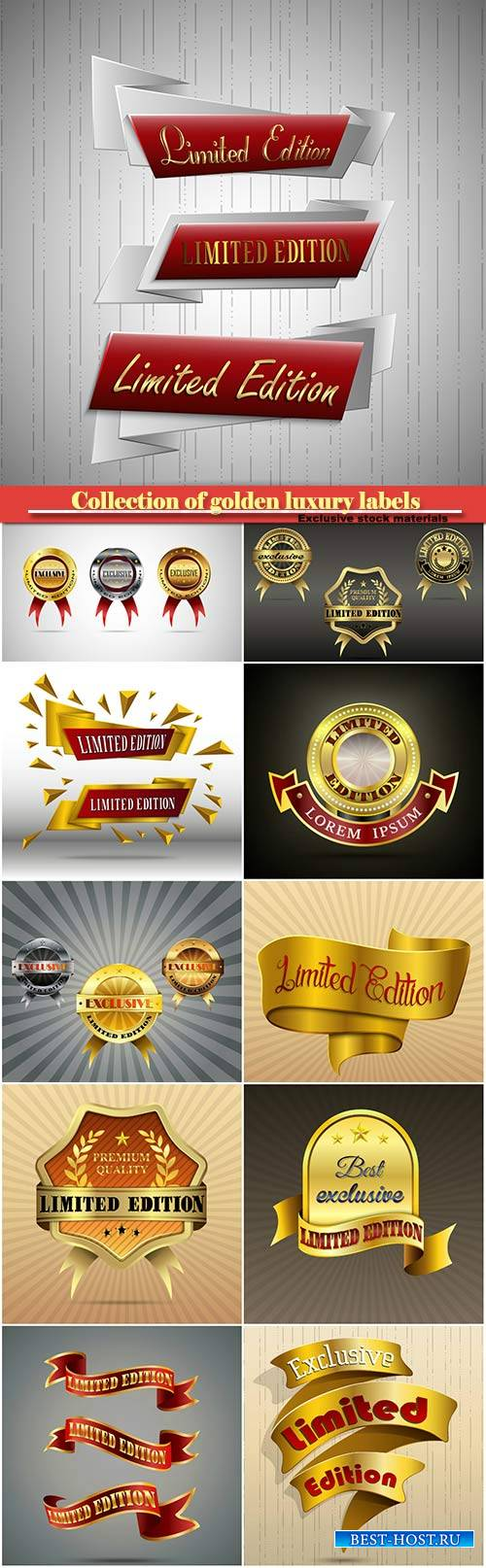 Collection of golden luxury labels in vector