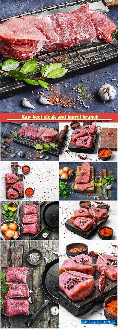 Raw beef steak and laurel branch on vintage background