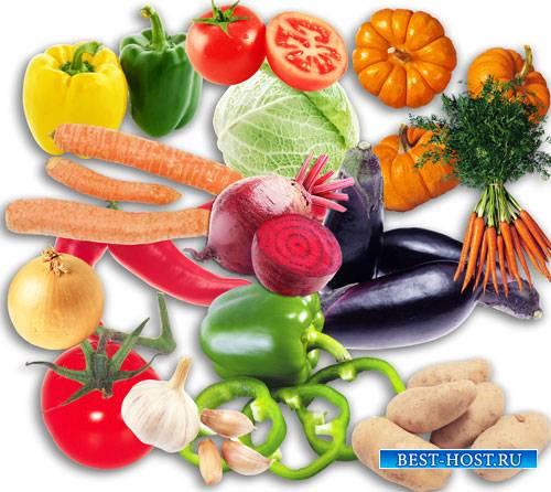 Гиганский сборник png на прозрачном фоне - Куча овощей