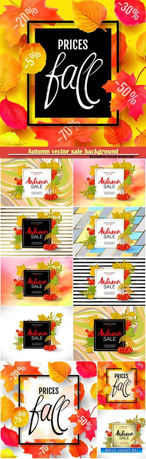 Autumn vector sale background with colorful autumn leaves and a rowan on ma ...