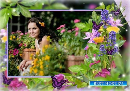 Рамка для фотошопа – Ты словно трепетный цветок