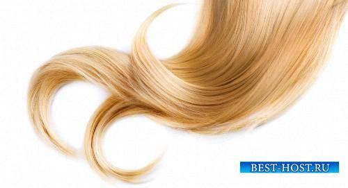 Картинки в формате png - Женские парики и волосы