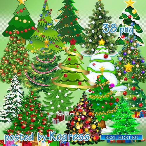Клипарт png для фотошопа - Новогодние , рождественские елки