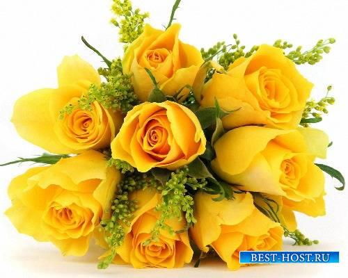 Фотошоп png - Желтые цветы