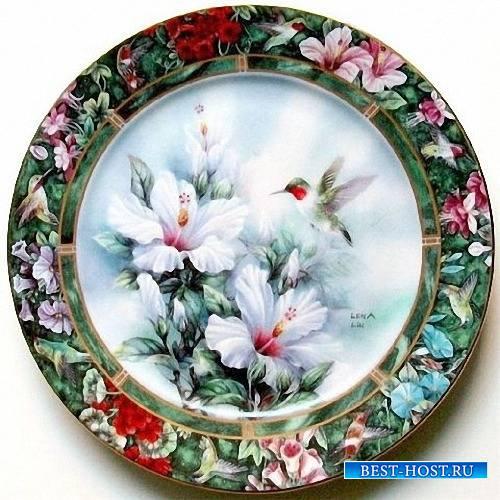 Png для фотошоп - Декоративные и столовые тарелки