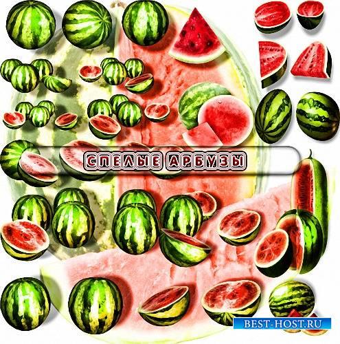 Клипарты png - Красные арбузы