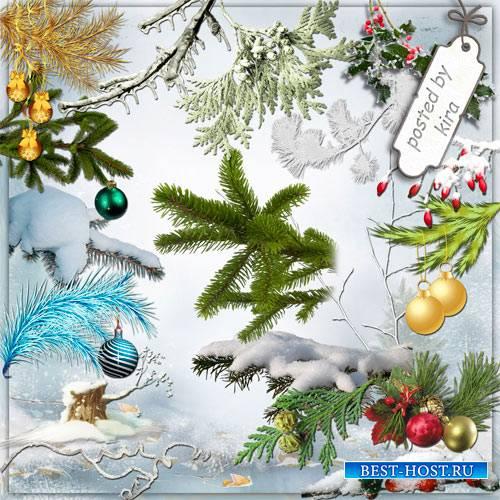 Клипарт новогодний - Зимние, заснеженные и наряженные ветки