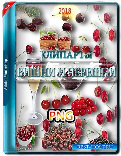 Картинки без фона - Черешни и вишни