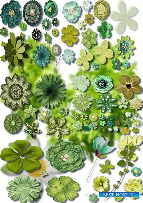 Новые клипарты Png - Зеленые цветы