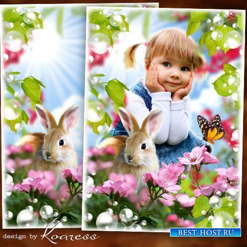 Детская рамка с природой для портретов - С зайчиком на полянке