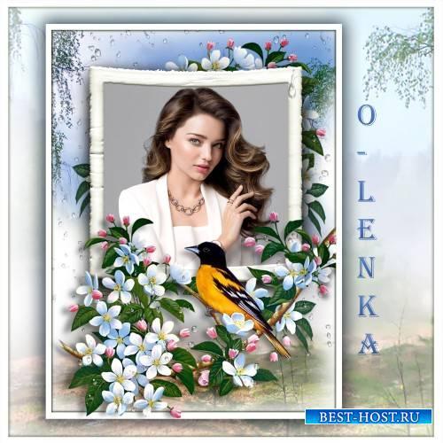 Рамка для фотошопа - Птицы по утрам поют, радость красоты дают