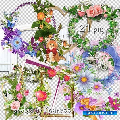 Подборка png рамок-вырезов для фотошопа - Цветочная коллекция