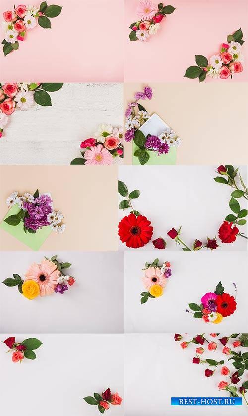 Цветочные фоны / Flower backgrounds