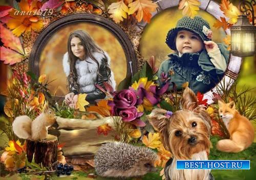 Рамка для фотошопа - На деревьях листьев мало