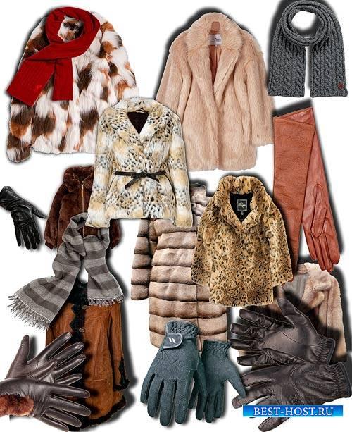 Клипарты png - Шубы, перчатки, шарфы