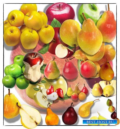 Клипарты png без фона - Яблоки и груши