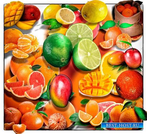 Png Клипарты - Тропические фрукты