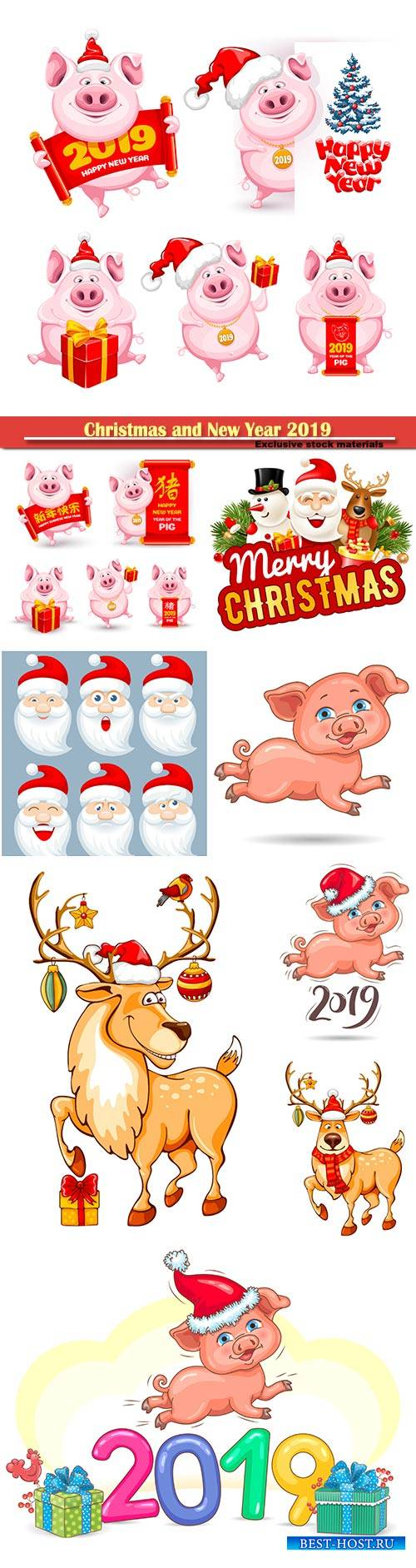 Christmas and New Year 2019 vector illustration, cartoon pigs