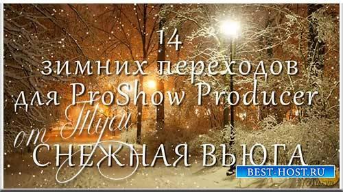 Снежная вьюга - Переходы для ProShow Producer и проект