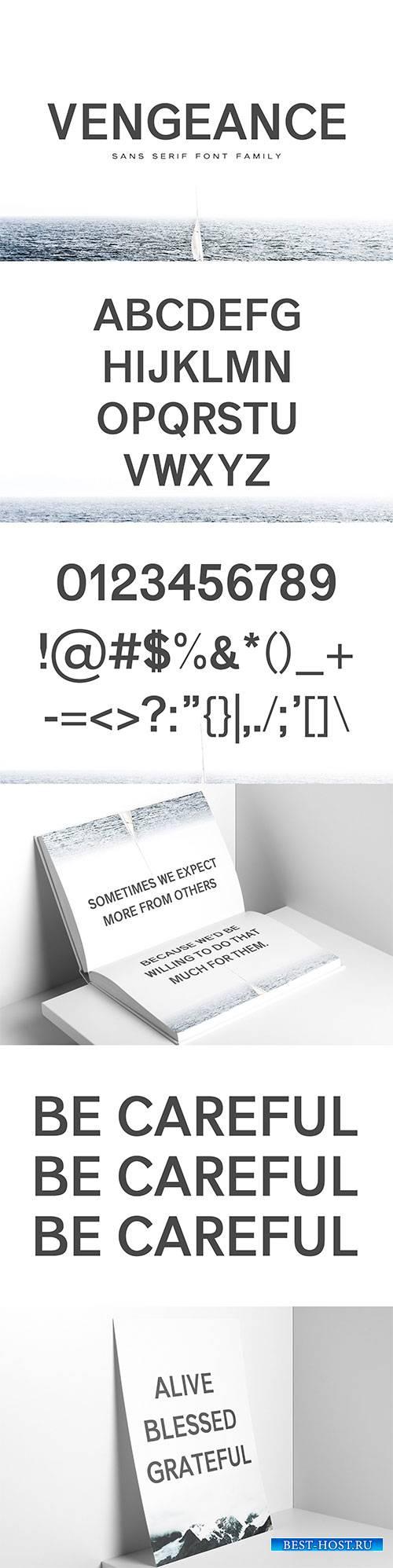 CM - Vengeance Sans Serif Font Family 1365076