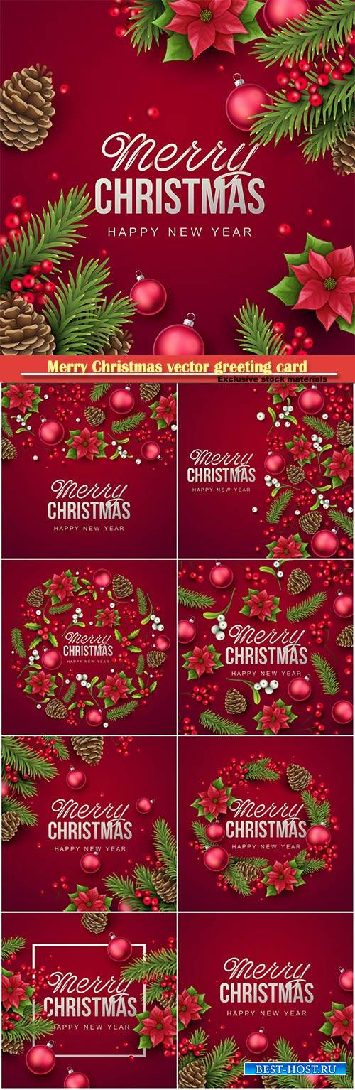 Merry Christmas and holidays vector greeting card