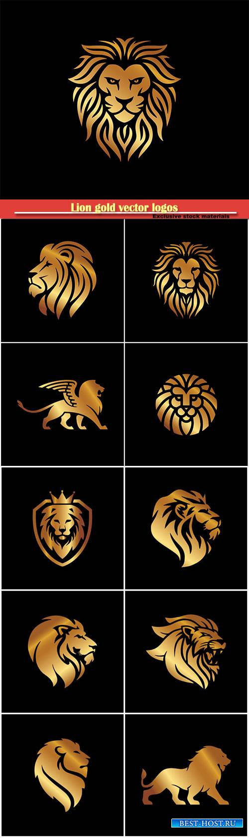 Lion gold vector logos on black background