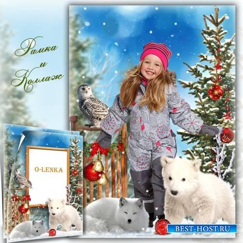 Новогодний коллаж и фоторамка - Рады снегу зверь и птица
