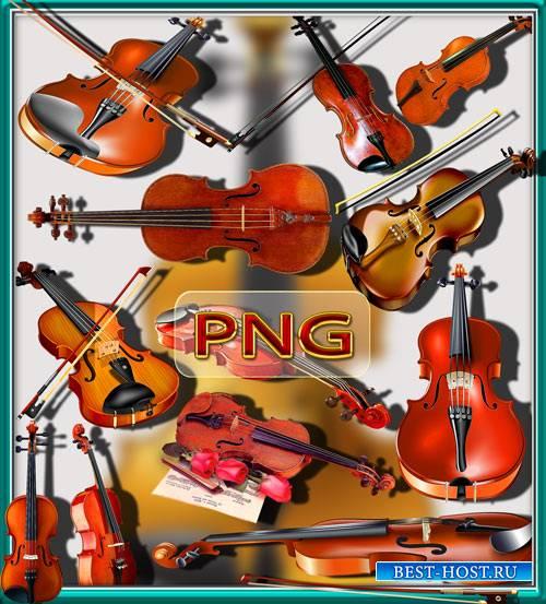 Png Клипарты - Скрипки