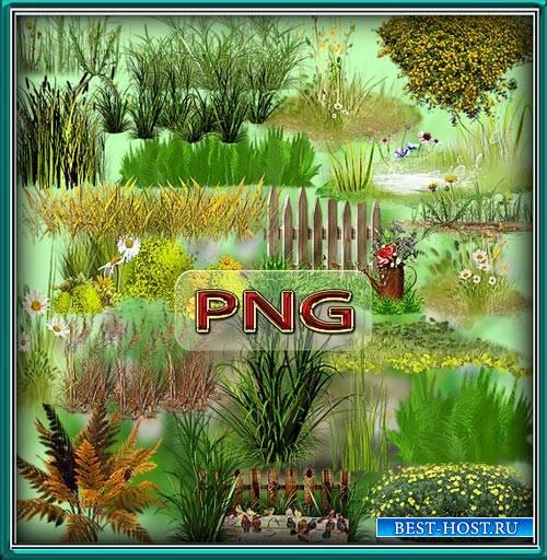 Качественные клип-арты - Зеленая и сухая трава