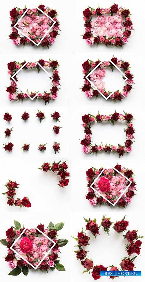 Цветочные рамки - Растровый клипарт / Floral  - Raster clipart