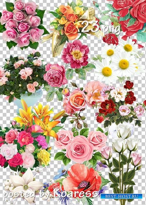 Клипарт png - Цветы, букеты