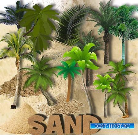 Png для фотошопа - Пальмы и песок