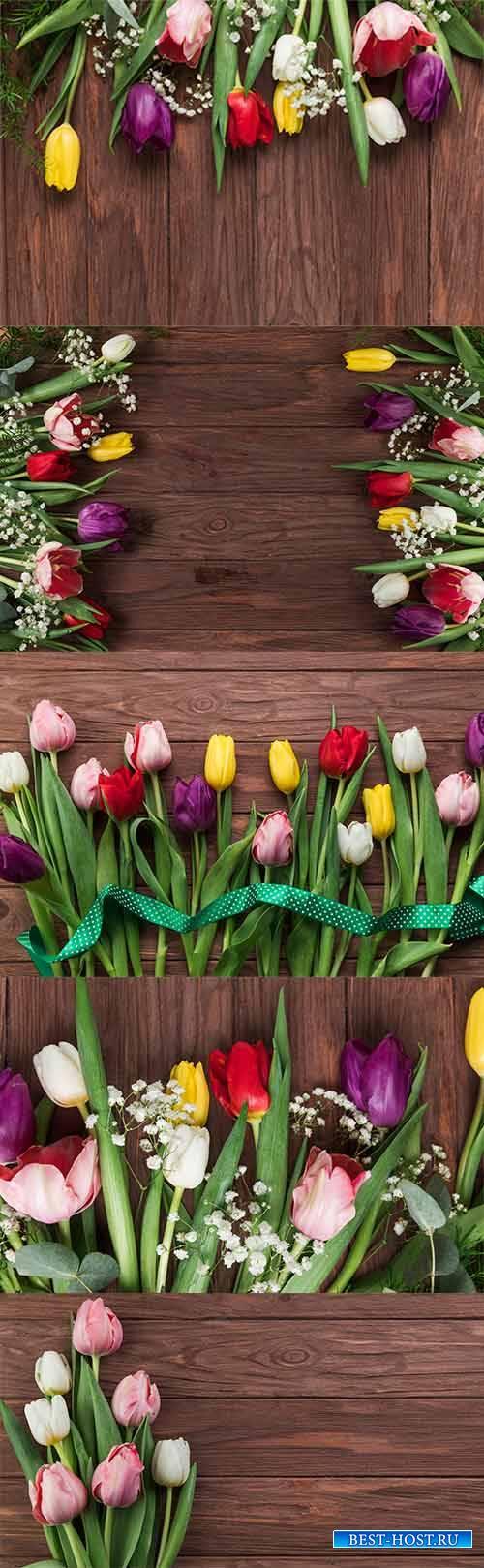 Фоны с красивыми тюльпанами - Растровый клипарт / Backgrounds with beautifu ...