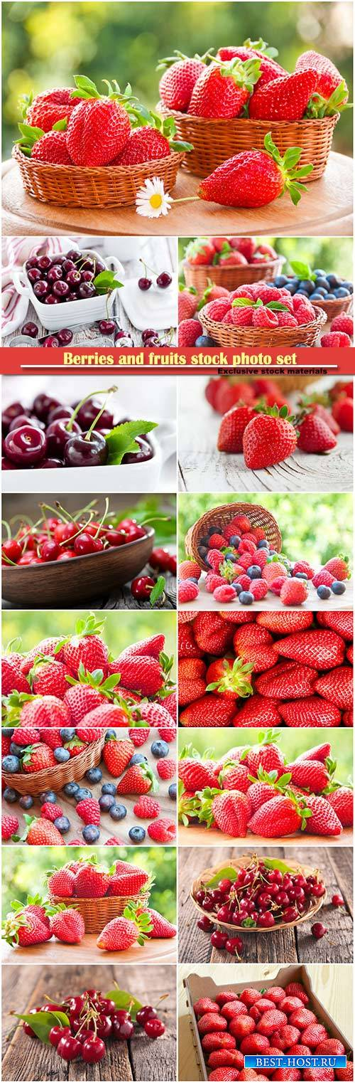 Berries and fruits stock photo set
