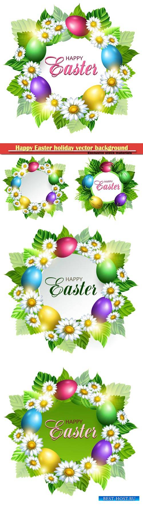 Easter card with eggs and chamomiles, vector spring decorative flowers