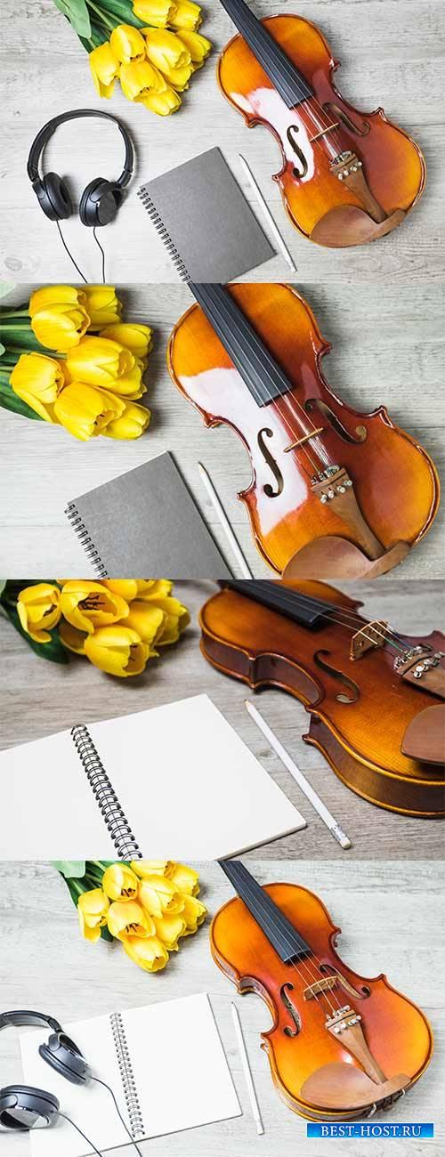 Фоны со скрипкой и тюльпанами - Растровый клипарт / Backgrounds with violin and tulips - Raster clipart