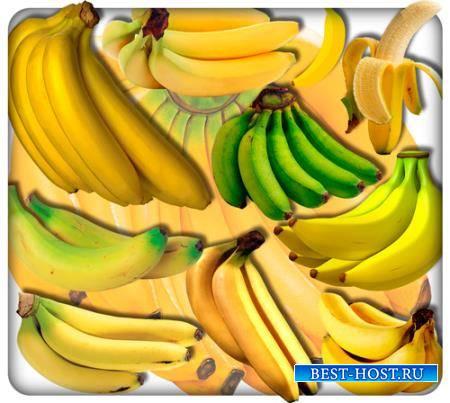 Png клипарты для фоторамки - Африканские бананы