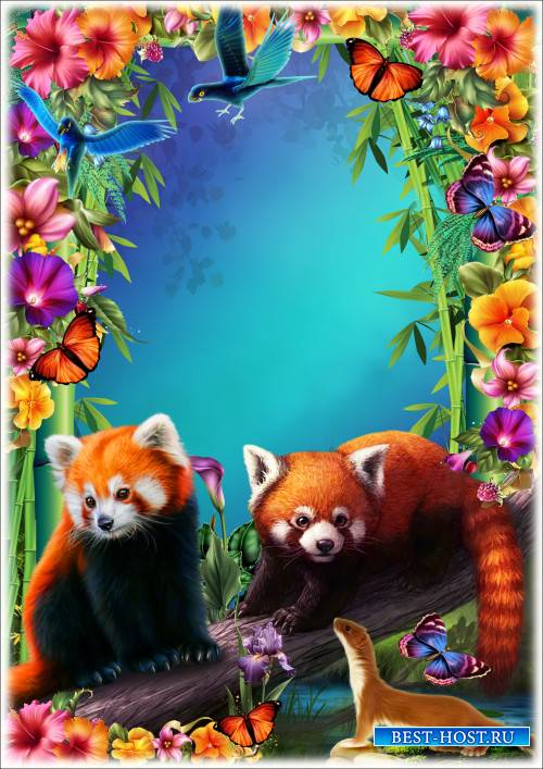 Рамка для Фотошопа - Бамбуковый рай