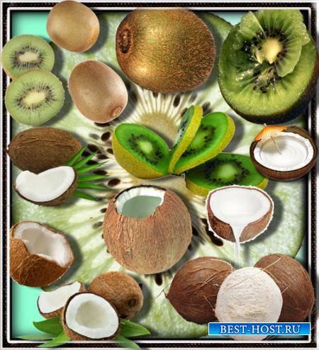 Png клипарты без фона - Киви и кокосы