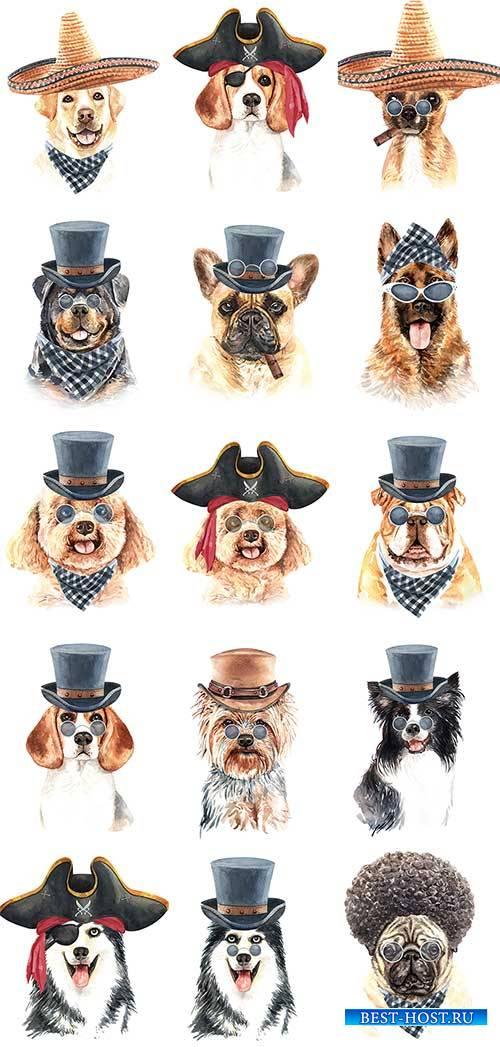 Собака в шляпе - Векторный клипарт / Dog in hat - Vector Graphics