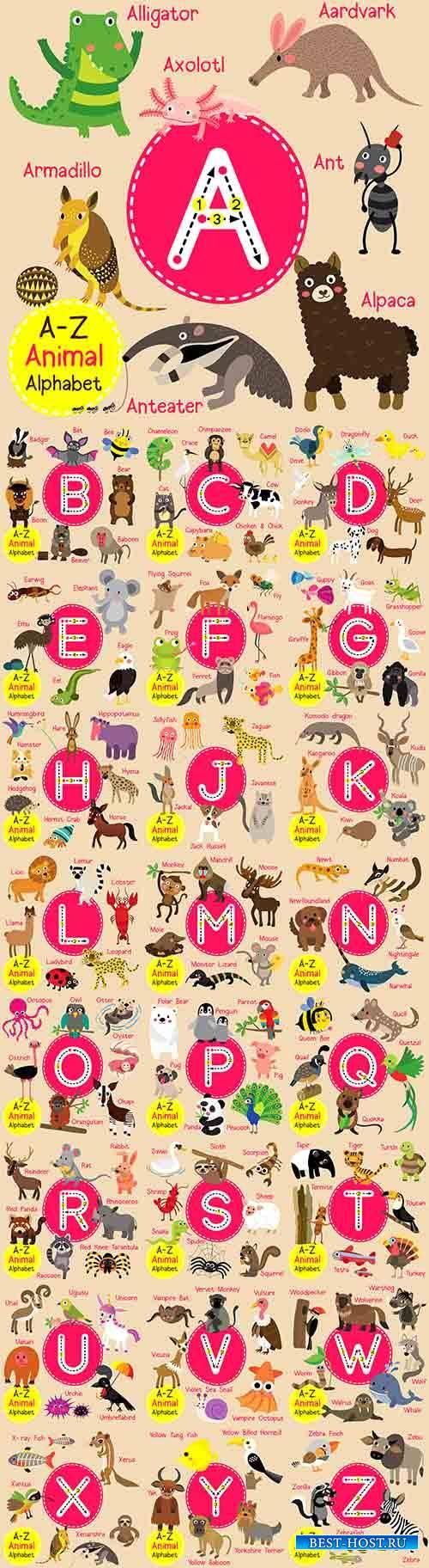 Английский алфавит в картинках - Векторный клипарт / English alphabet in pictures - Vector Graphics