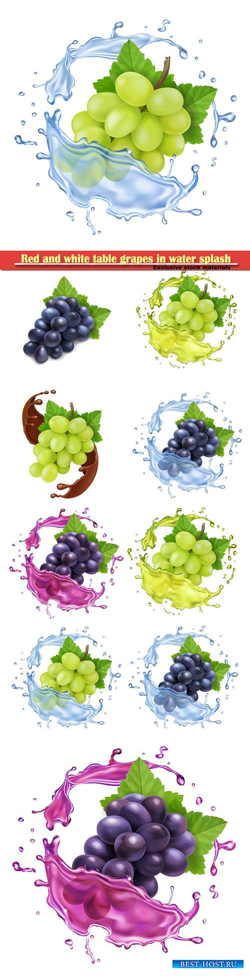 Red and white table grapes in water splash bunch of wine grapes realistic s ...
